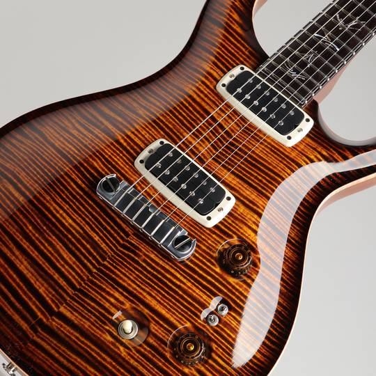 Paul Reed Smith Private Stock #5559 Paul's Graphite Guitar Zombie Eye Smoked Burst 2015 ポールリードスミス サブ画像10