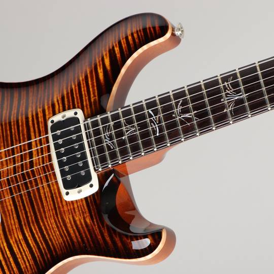 Paul Reed Smith Private Stock #5559 Paul's Graphite Guitar Zombie Eye Smoked Burst 2015 ポールリードスミス サブ画像11