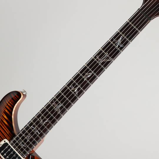 Paul Reed Smith Private Stock #5559 Paul's Graphite Guitar Zombie Eye Smoked Burst 2015 ポールリードスミス サブ画像5