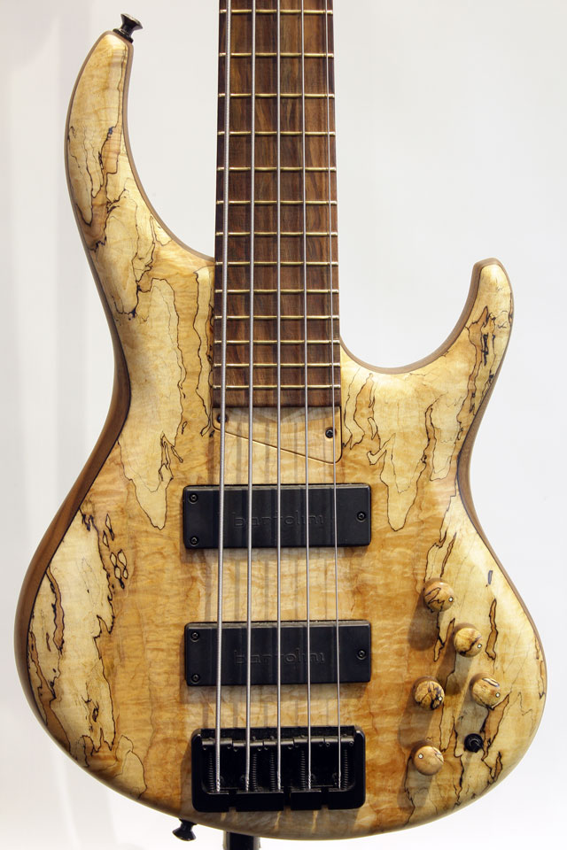 535-24 Spalted Maple top / Walnut Body